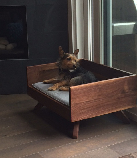 modern wood dog bed