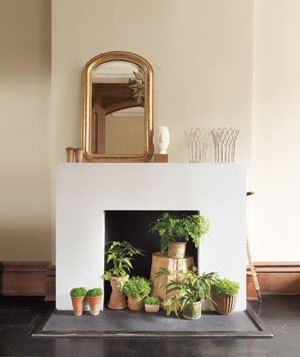 Plants in the minimalist white fireplace