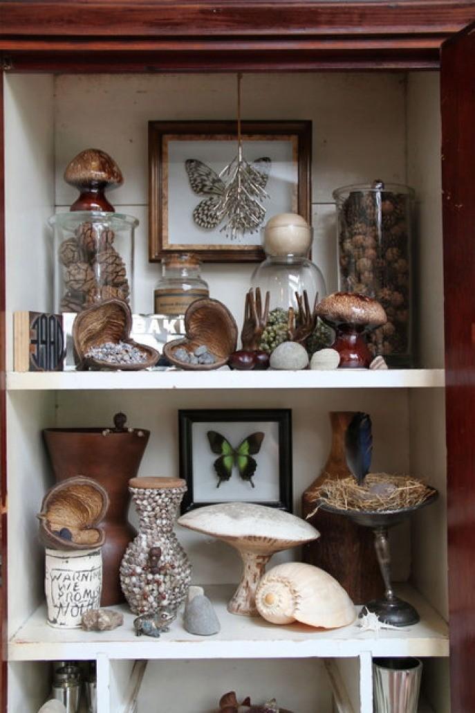 Cabinet of curios shelves