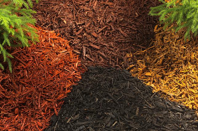 Garden mulch variety landscaping ideas
