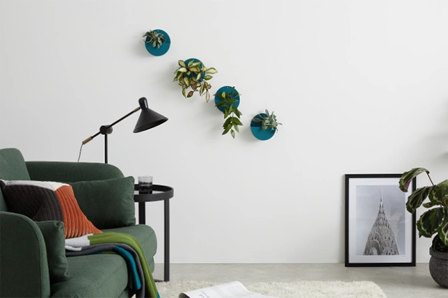 small living room ideas plants